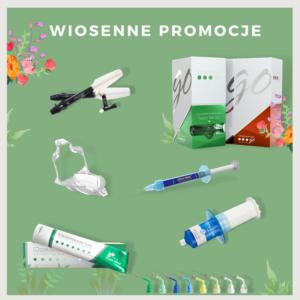 Wiosenne Promocje